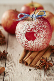Red apple with stenciled apple logo and spices on wooden table - DSC000136