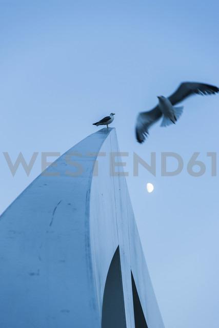 Great Britain, Scotland, Glasgow, footbridge, gulls and half moon - PAF000186 - Andreas Pacek/Westend61