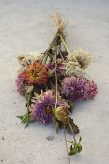 Bunch of withered dahlias on grey slab - AXF000607