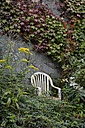 White plastic chair in front of a vegetated wall - AXF000613