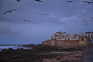 Morocco, Essaouira, view to fortress at dusk - HSIF000309