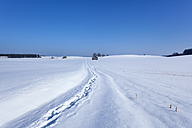 Germany, Bavaria, snow covered landscape with footprints - HSIF000317
