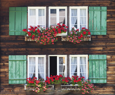 Switzerland, Bernese Oberland, Windows with flower boxes of farmhouse - WWF002941