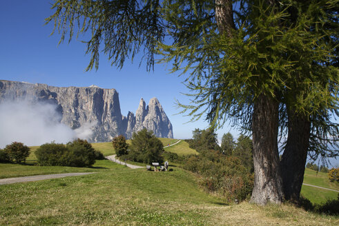 Italy, South Tyrol, Seiseralm and Schlern group - WW003064