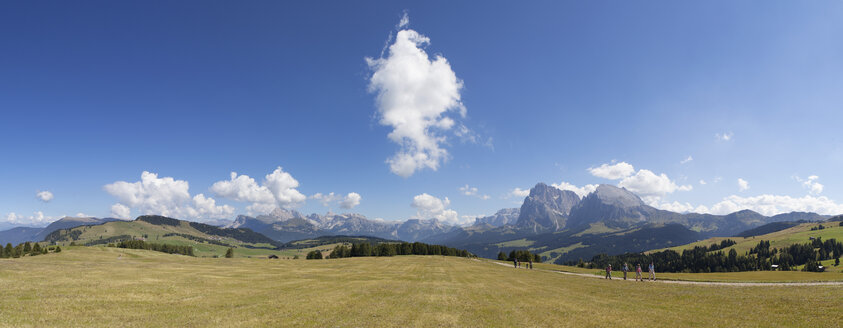 Italy, South Tyrol, Seiseralm and Langkofel group - WWF003068