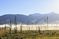 Canada, British Columbia, Landscape at Yellowhead Highway - FOF005464