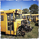 Old school bus, Canada, Saskatchewan - SE000113