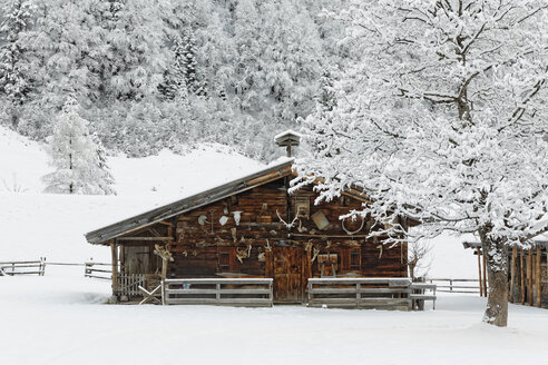 Austria, Tyrol, Eng, snow covered alp - GFF000380