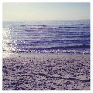 Germany, Germany, Baltic Sea, Darss, West beach - BMF000659