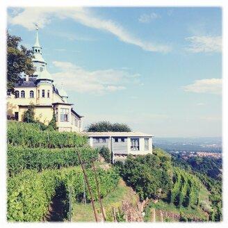 Dresden, vineyards, panoramic restaurant Spitzhaus - BMF000683