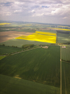 Field of canola (Brassica rapa), aerial view, Mecklenburg, Germany - FBF000142