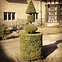 decoratic hedge, Potsdam, Germany - FB000103