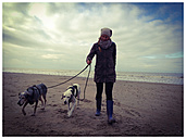 Walk with dog at sea, winter, Netherlands, Ouddorp, North Sea - ONF000323