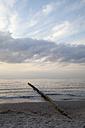 Germany, Mecklenburg-Western Pomerania, Graal-Mueritz, part of beach at evening light - WIF000291