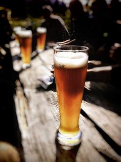 Beer garden Frasdorf, Chiemgau, Bavaria, Germany - SRS000448