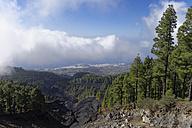 Spain, Canary Islands, La Palma, Coladas de San Juan, Cumbre Vieja, Lava flow - SIEF004948