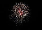 Fireworks at black sky - SLF000243