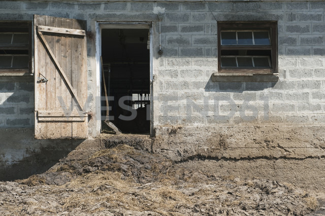 Germany, Bavaria, Toelzer Land, Farm with view into cowshed - CR002563