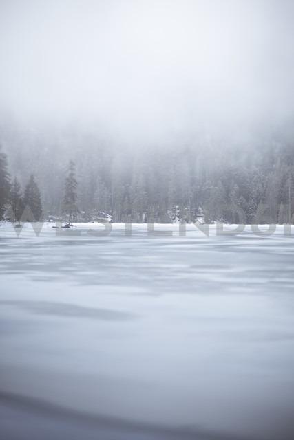 Germany, Bavaria, Frozen Grosser Arbersee - SBDF000448 - Susan Brooks-Dammann/Westend61
