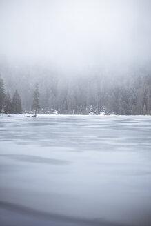 Germany, Bavaria, Frozen Grosser Arbersee - SBDF000448