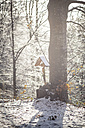 Germany, Bavaria, Bodenmais, Wayside cross in winterly forest - SBDF000451