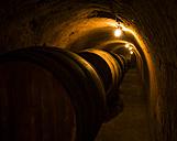 Austria, Lower Austria, wine quarter, Straning, wine cellar - DIS000383