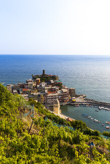 Italy, Liguria, Cinque Terre, View of fishing village Vernazza - AMF001644