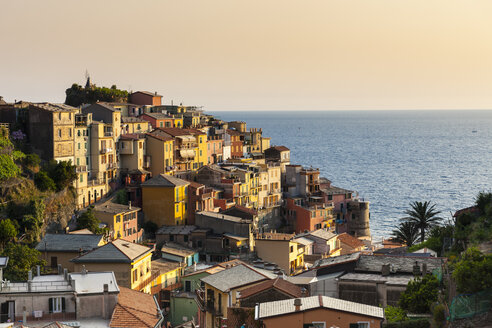 Italy, Liguria, Cinque Terre, View of fishing village Manarola - AMF001630