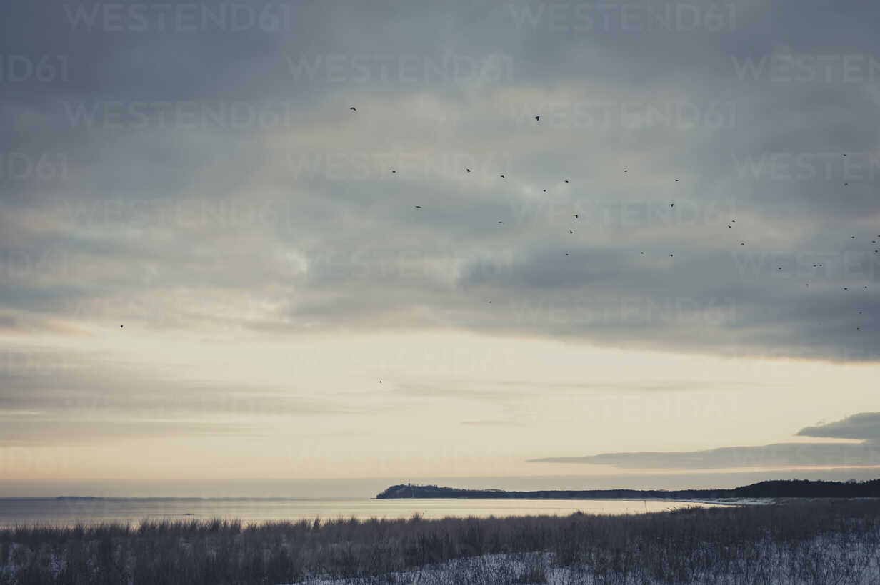 Germany, Mecklenburg-Western Pomerania, Ruegen in winter - MJF000720 - Jana Mänz/Westend61