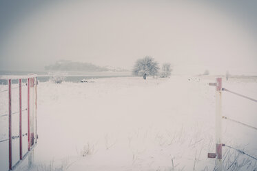 Germany, Mecklenburg-Western Pomerania, Ruegen in winter - MJF000616