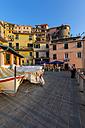 Italy, Liguria, Cinque Terre, Manarola - AM001732