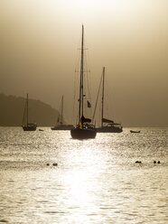 Caribbean, Antilles, Lesser Antilles, Saint Lucia, sailing yachts at sunset - AMF001721