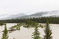 Canada, Alberta, Rocky Mountains, Banff National Park, flooding in the year 2013 - FOF005607