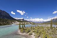 Canada, Alberta, Jasper National Park, Banff National Park, Icefields Parkway, Saskatchewan River - FOF005656
