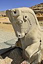 Iran, Persepolis, view to bull capitel - ES000973