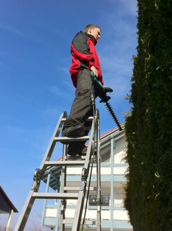 Gardener with the hedge trimmer on ladder, Germany, Baden-Wuerttemberg, Dingelsdorf - JEDF000126