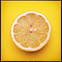 Colorful Food, Lemon on Yellow - MVC000077