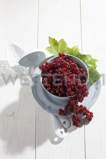 Bowl of currants on wooden table - CSF020668