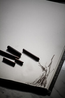 Sepia sticks on sketchbook - SBDF000500
