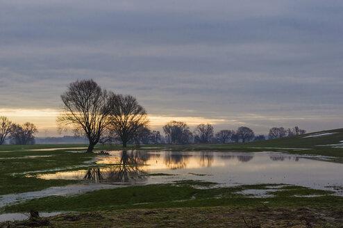 Germany, Saxony, flooded landscape in winter - MJF000864