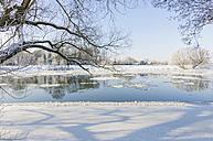 Germany, winter landscape with frozen hollow - MJF000779