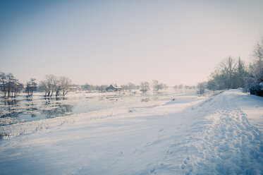 Germany, winter landscape with frozen hollow - MJF000793