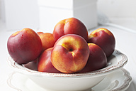 Close up of nectarines in a bowl - CSF020769