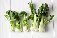 Row of five pak choi on white wooden table - CSF020799
