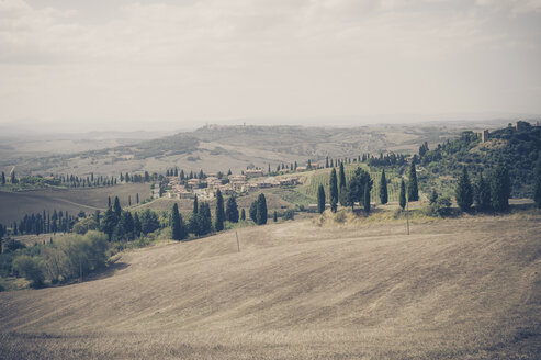 Italy, Tuscany, Val d'Orcia, Rolling landscape at Pienza - MJF000822