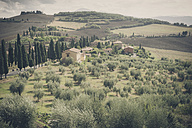 Italy, Tuscany, Val d'Orcia, Rolling landscape at Monticchiello - MJF000821