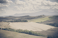 Italy, Tuscany, Val d'Orcia, Rolling landscape - MJF000742