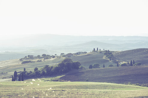 Italy, Tuscany, Val d'Orcia, Rolling landscape - MJF000827
