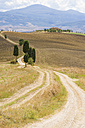 Italy, Tuscany, Val d'Orcia, Rolling landscape at Siena - MJF000840