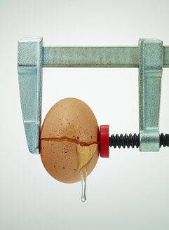 Broken egg under pressure in bar clamp - AKF000311